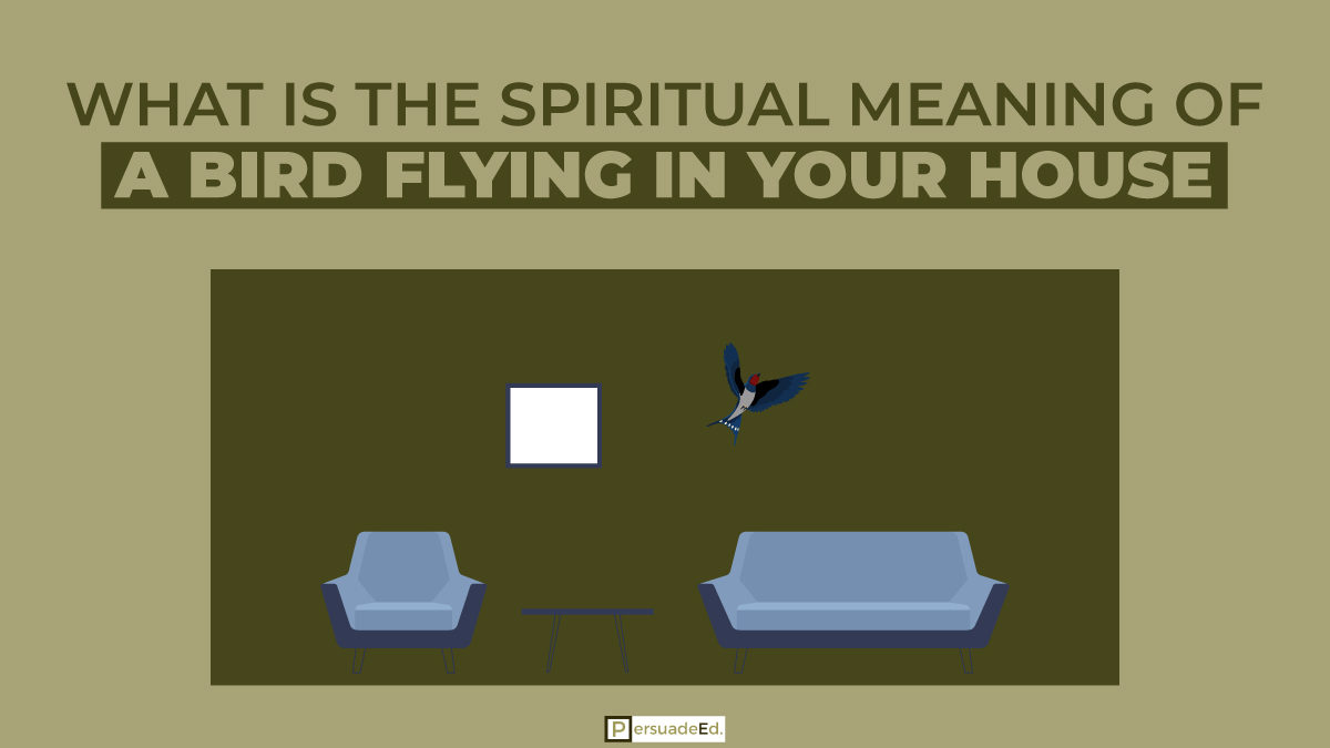What Is the Spiritual Meaning of a Bird Flying in Your House?