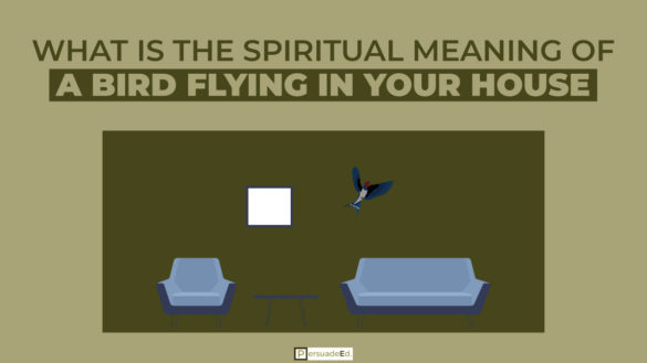 What Is the Spiritual Meaning of a Bird Flying in Your House